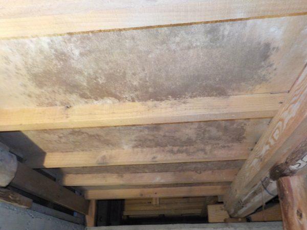 階段下収納の床下ベニヤの劣化