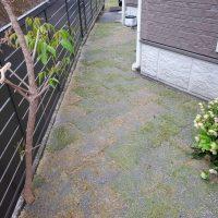 天然芝工事 静岡市駿河区A邸の画像3